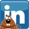 LinkedIn Gopher