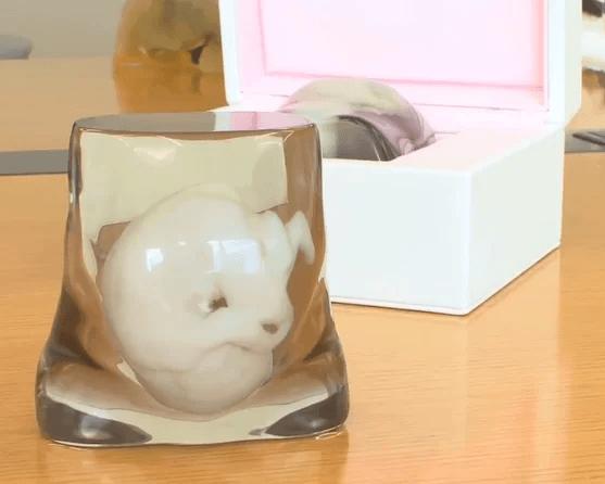weird 3D printing - a foetus