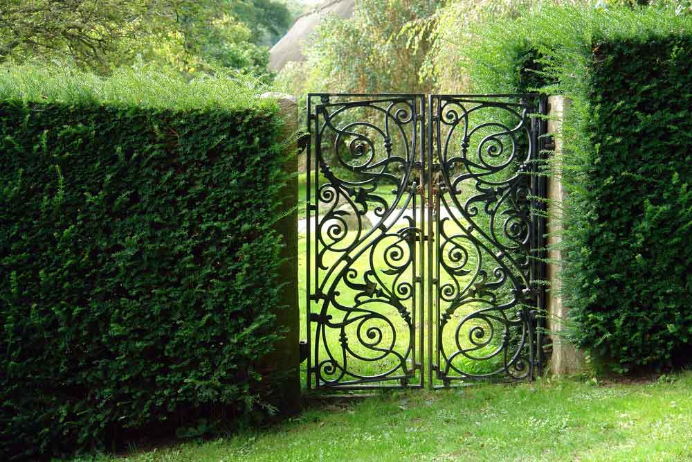 An ornate garden gate made from wrought iron