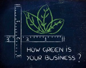 how green is your business written on the blackboard